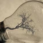 Créez votre définition de l'innovation